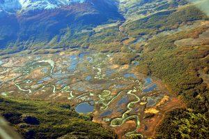 foto 22 Carbajal peatlands in Tierra del Fuego - Argentina